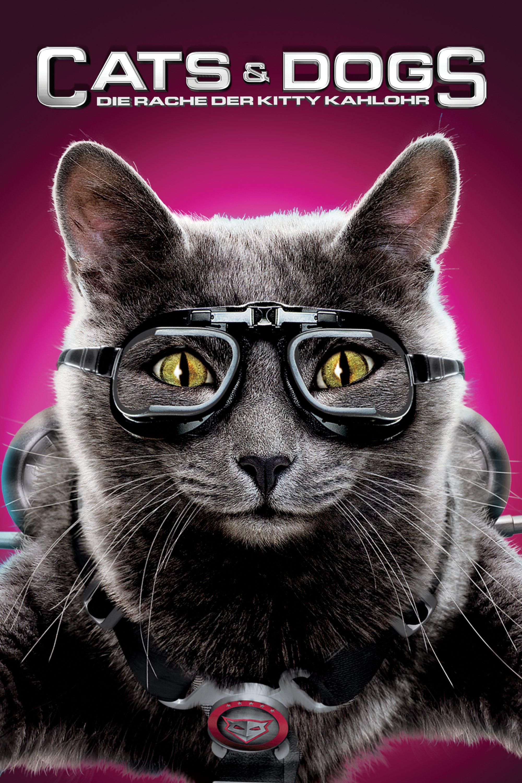 """Plakat von """"Cats & Dogs - Die Rache der Kitty Kahlohr"""""""